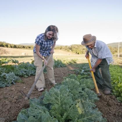 Prodotti a km O per un turismo sostenibile in Valtiberina Toscana