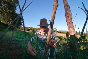 Nonno Armando nel suo orto!