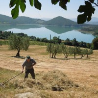 Agriturismo Le Ceregne Bio - Il fieno