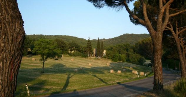 Agriturismo BIO in Toscana vicino Arezzo. Raggiungici sul Lago di Montedoglio in Valtiberina
