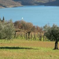 Offerta Pranzo 25 Aprile Agriturismo Arezzo