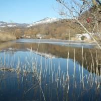 pesca-in-acqua-dolce-in-toscana-fiume-lago