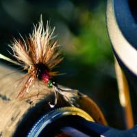 pesca-mosca-in-valtiberina-toscana