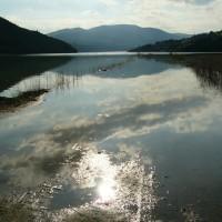 Vacanza sportiva: pesca lago di Montedoglio