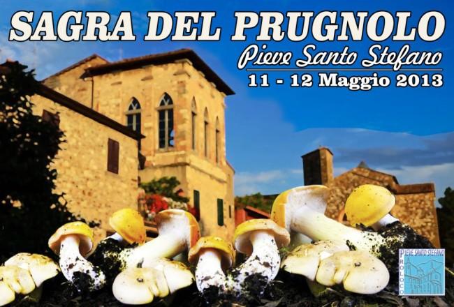 funghi_prugnoli_Toscana