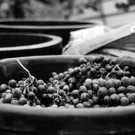 Hai mai fatto il vino in Toscana? Vivi con noi la vendemmia in Valtiberina!