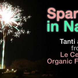 Cenone di Capodanno | Agriturismo Bio Arezzo