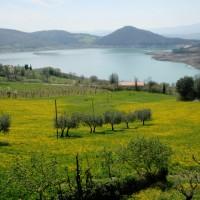 Offerte Ponte dell' Immacolata e Sant' Ambrogio 2016 | Agriturismo Biologico Toscana
