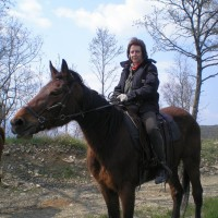 Lezioni di equitazione